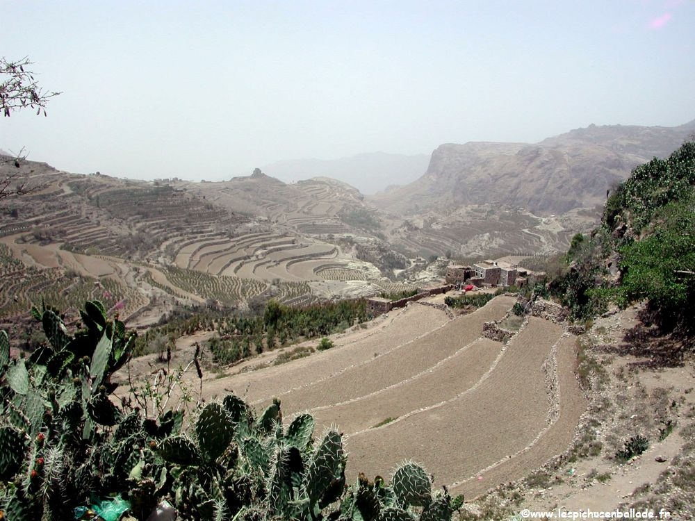 Avril 2005 yemen for Images de terrasses amenagees